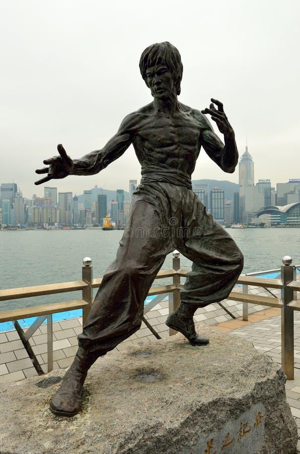 bruce άγαλμα καταφυγίων στοκ φωτογραφίες με δικαίωμα ελεύθερης χρήσης