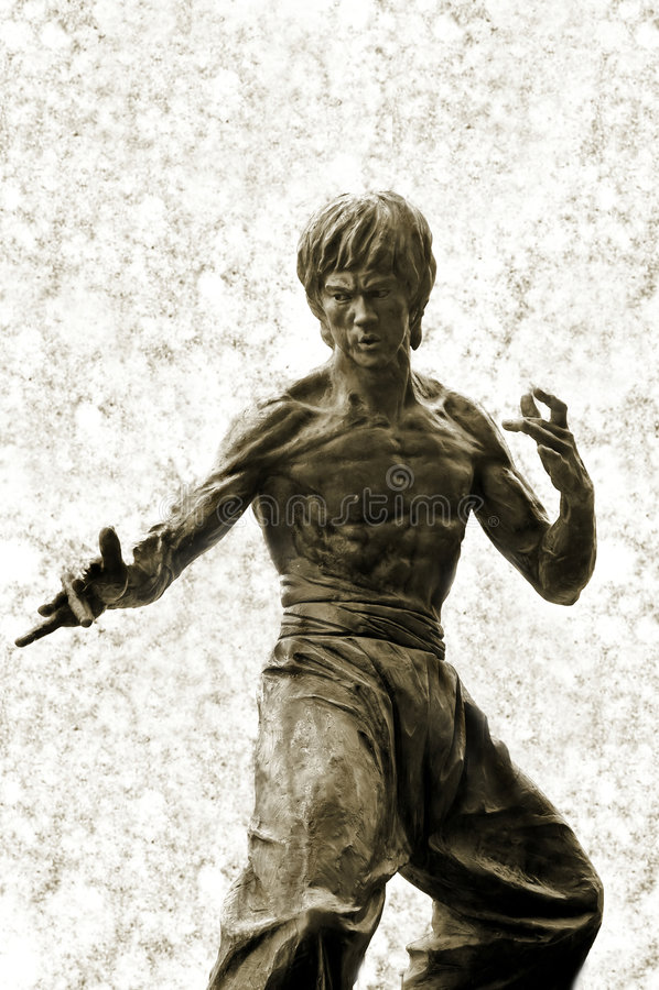 bruce άγαλμα καταφυγίων στοκ εικόνες