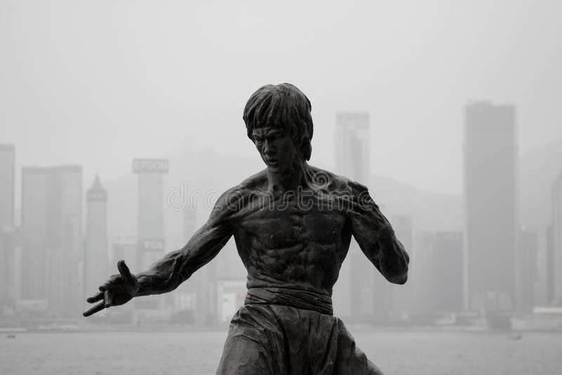 Bruce Lee stockfotos
