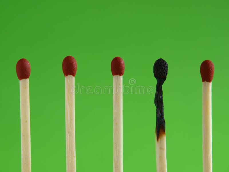 Bruci immagini stock libere da diritti