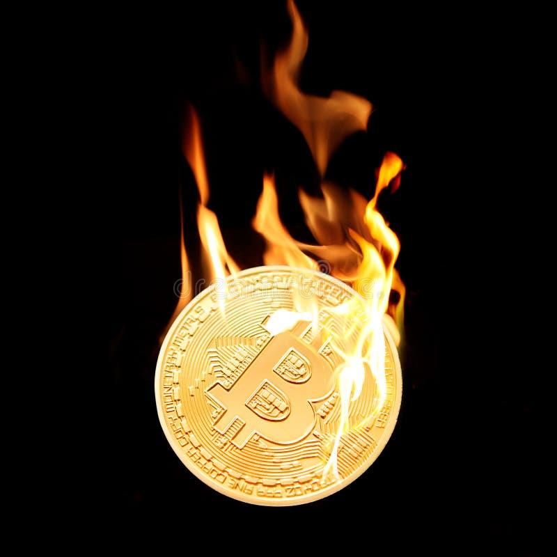 Bruciando nel bitcoin dorato del fuoco isolato sul nero fotografia stock libera da diritti