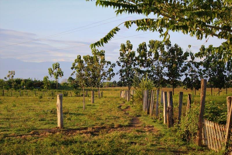 Brud ścieżka przez pola na Wenezuelskim rancho graniczył drutem kolczastym i elektrycznymi ogrodzeniami z górami w tle fotografia royalty free