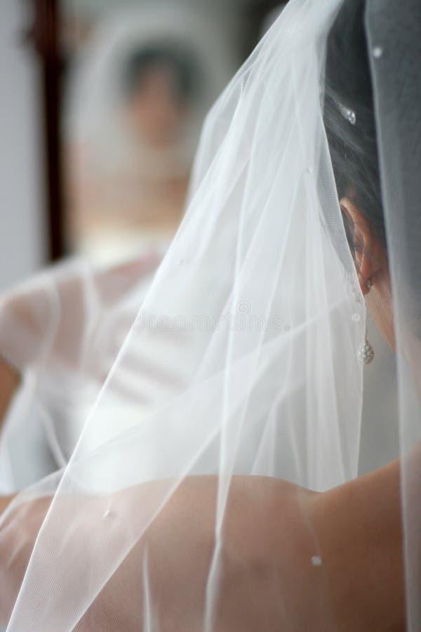 Download Brud fotografering för bildbyråer. Bild av jubilee, brudgum - 238685