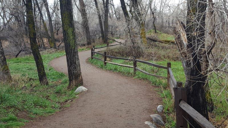 Brud chodząca ścieżka w głazie, Kolorado obraz royalty free