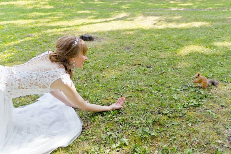 Brud i vit som ligger på gräs bredvid ekorren fotografering för bildbyråer