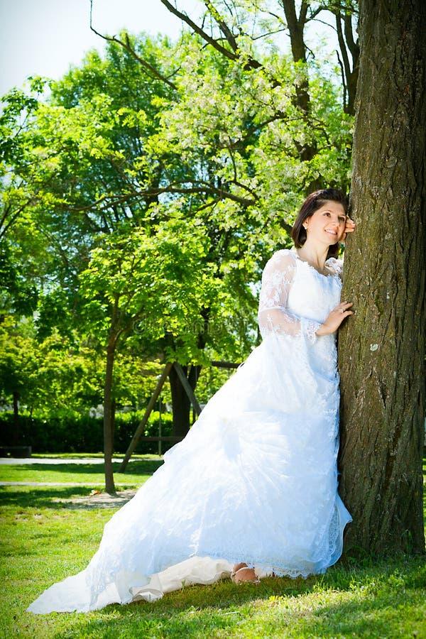 Brud i white På parkera nära ett träd royaltyfria foton