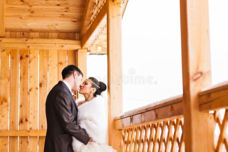 Brud och brudgum i en vinter royaltyfria bilder