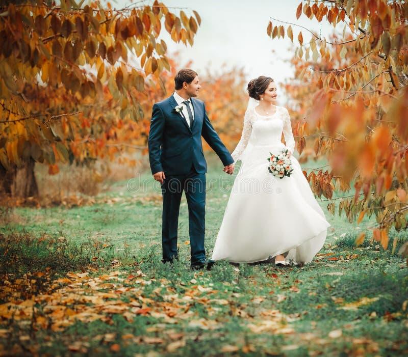 Brud och brudgum på att gå för bröllopdag fotografering för bildbyråer