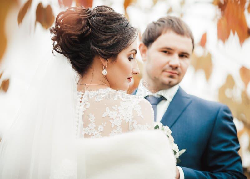 Brud och brudgum på bröllopdagen som utomhus går royaltyfria bilder