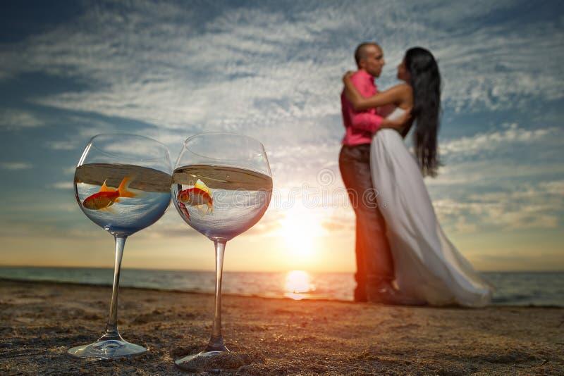 Brud och brudgum på solnedgången royaltyfria foton