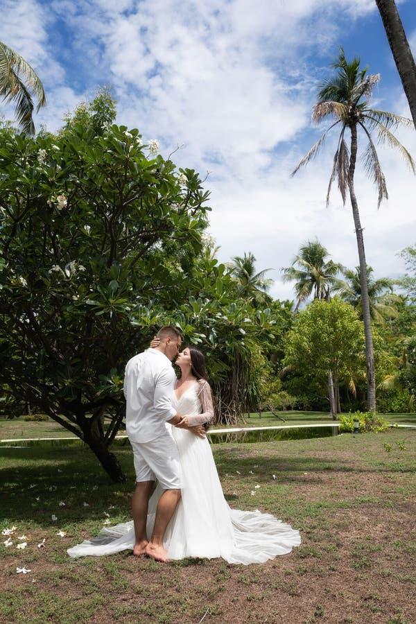 Brud- och brudgumkyssen nära det blomstra exotiska trädet arkivfoton