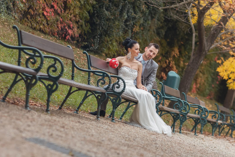Brud- och brudgumsammanträde på bänk i en parkera royaltyfria foton
