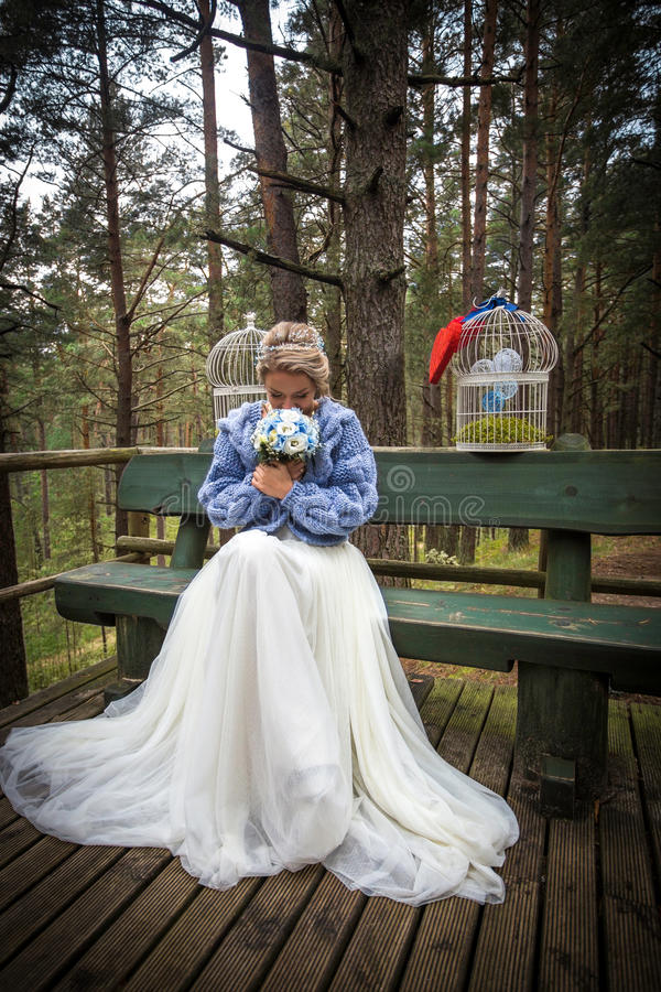 Brud på bröllopdagen royaltyfri foto