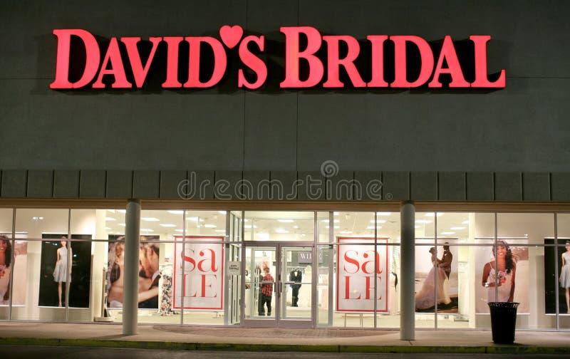 Brud- sömmerska för David ` s royaltyfri foto