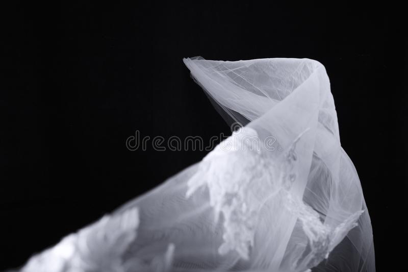 Brud- skyla på svart bakgrund fotografering för bildbyråer