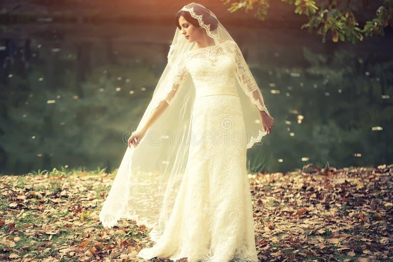 Brud som är utomhus- i höst royaltyfri fotografi