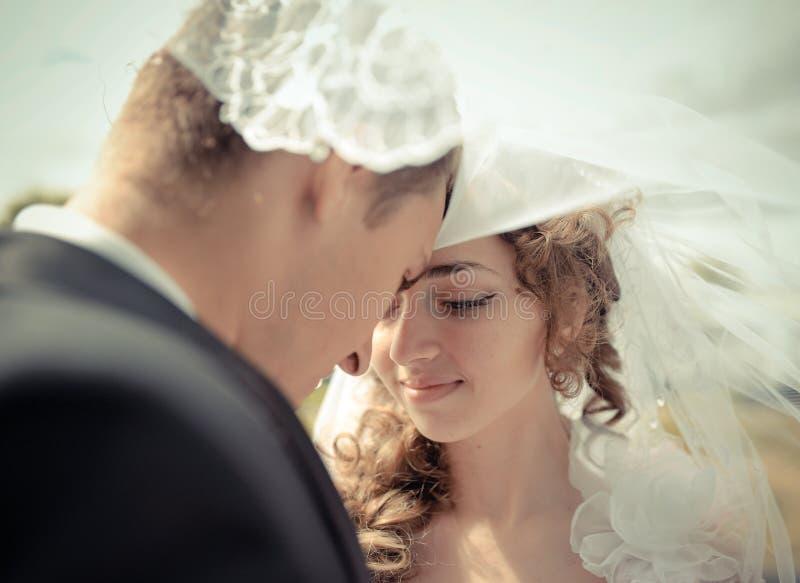 Brudar och brudgummen under en skyla royaltyfria foton