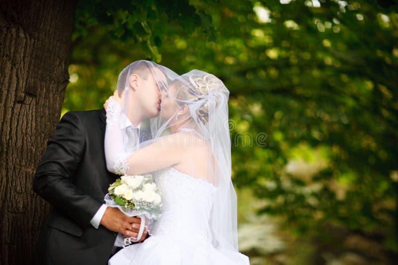 brudbrudgumkyss royaltyfria bilder