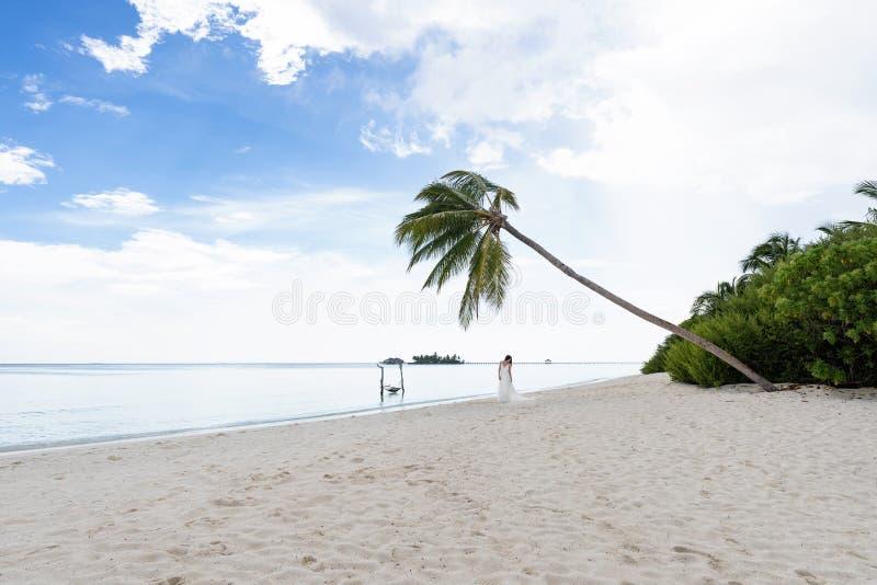 Bruden i en vit klänning står i avståndet under en palmträd på en snövit strand Bröllop på en tropisk ö royaltyfri fotografi