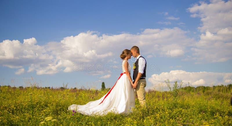 Bruden och brudgummen rymmer händer på en grön äng under vita moln Romantiskt bröllop för sommar royaltyfri fotografi