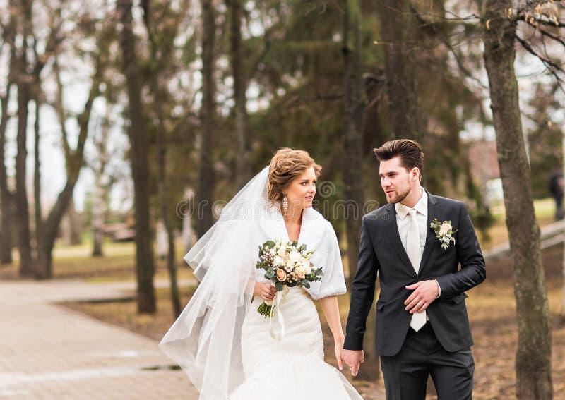 Bruden och brudgummen som går i hösten eller vintern, parkerar fotografering för bildbyråer