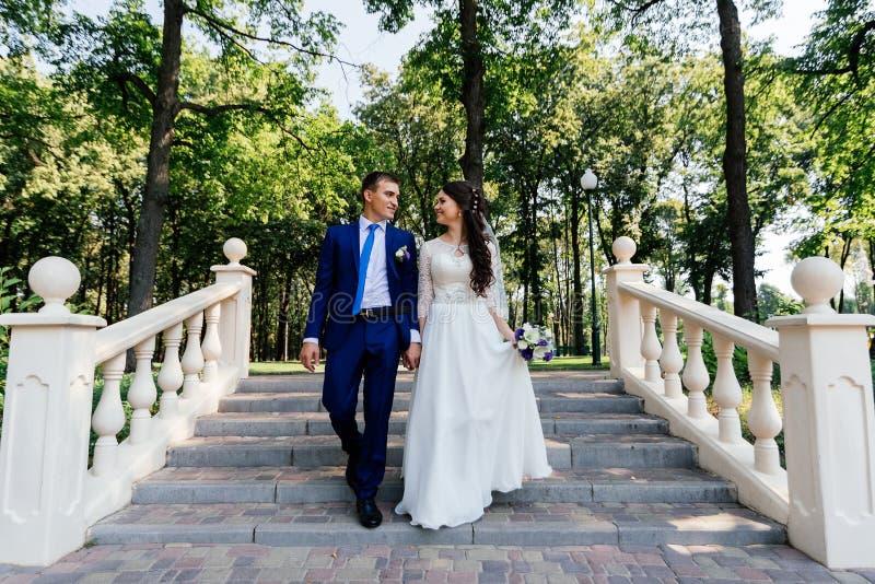 Bruden och brudgummen som går ner trappan i parkera Brudgummen omfamnar bruden Gifta sig par som är förälskade på wedddagen royaltyfria bilder