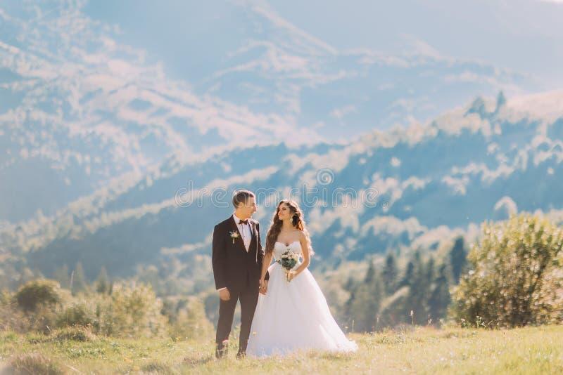 Bruden och brudgummen står i ängen bara Landskap i ett bergigt område arkivbilder