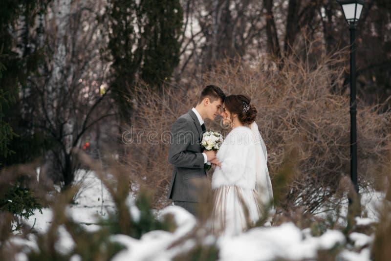 Bruden och brudgummen står i vinterskogen som tillsammans kuras royaltyfri foto