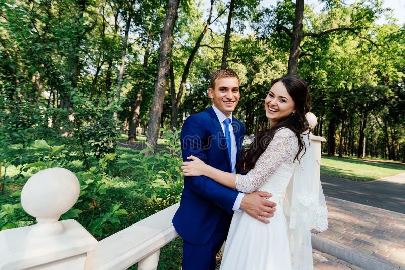 Bruden och brudgummen står på trappan i parkera Brudgummen omfamnar bruden Gifta sig par som är förälskade på wedddagen royaltyfri fotografi