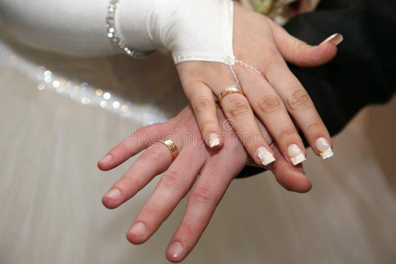Bruden och brudgummen visar deras händer som bär vigselringar arkivbilder