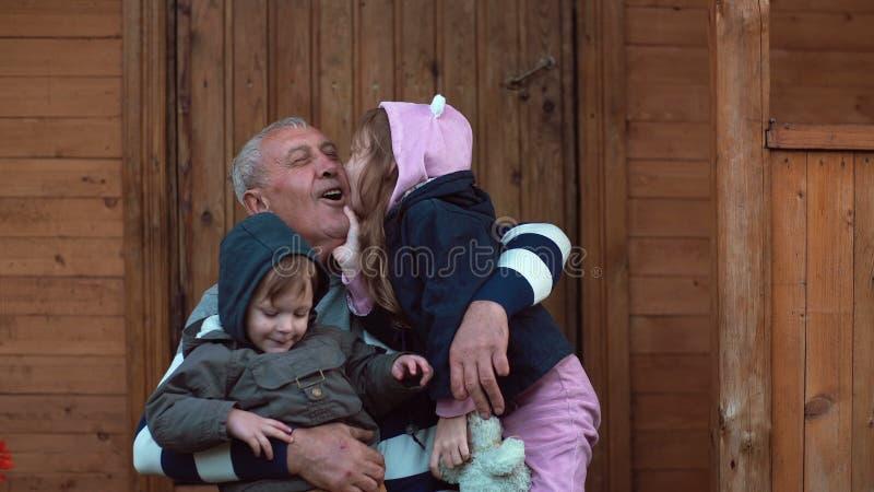 Bruder und Schwester, die auf den großväterlichen Knien sitzen Alter Mann umarmt Enkel und Enkelin Mädchenkussgroßvater 4K lizenzfreie stockfotos