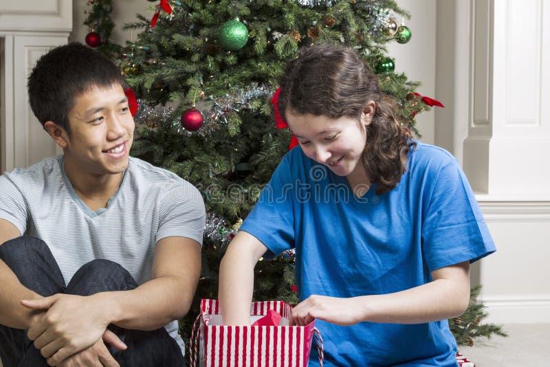 Bruder und Schwester, die Geschenke am Weihnachtstag teilend genießt stockbilder