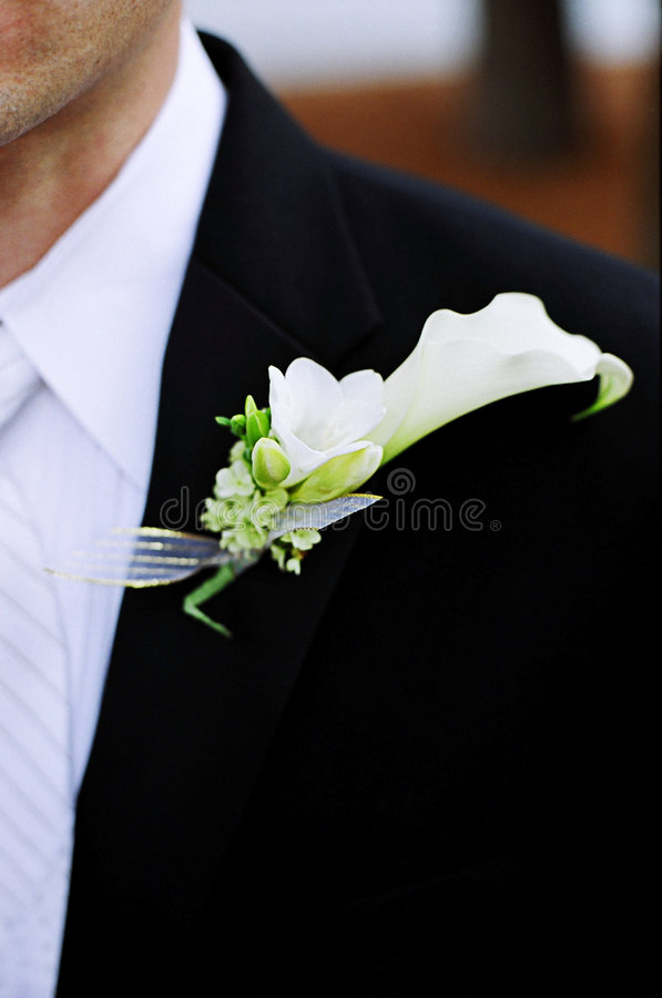 brudgum arkivbild