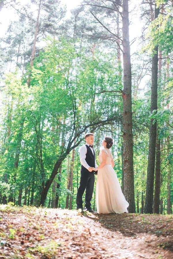 Brudgum och brud tillsammans Utomhus- romantiska par för bröllop arkivfoto