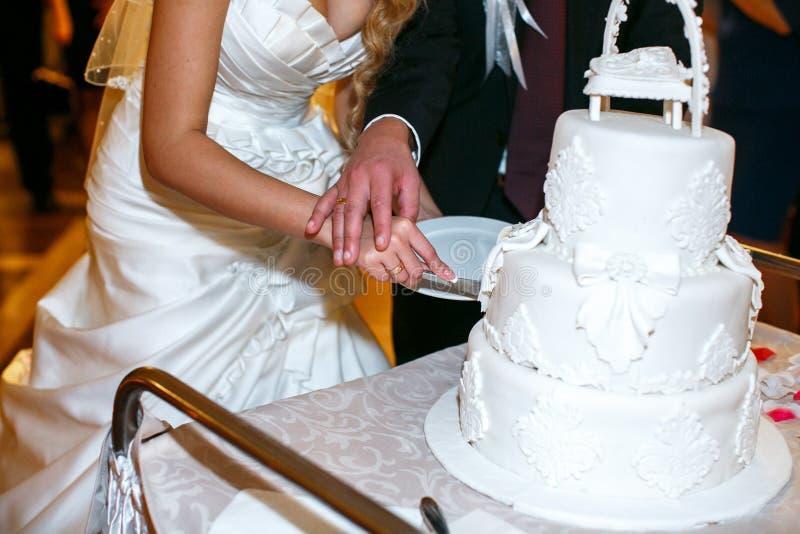 Brudgumhållbruds hand ömt, medan hon klipper en bröllopstårta royaltyfria bilder