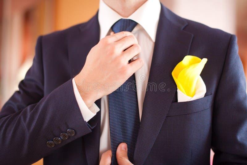 Brudgumman i den purpurfärgade dräkten som binder slipsen royaltyfri bild