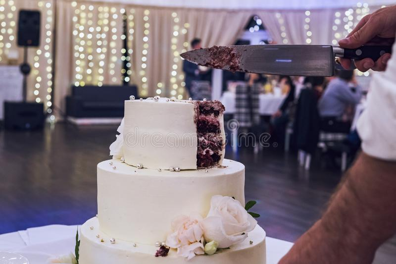 Brudgummen klipper den multitiered vita mastixbröllopstårtan i en bankettkorridorbakgrund Bröllopstårtan klipps med kniven av en  royaltyfria bilder