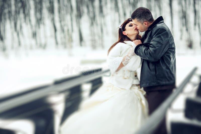 Brudgummen kysser en brud som rymmer henne armar, medan stå i winten arkivbild