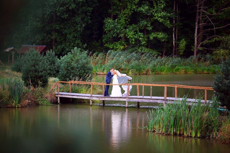 Brudgummen rymmer bruden i hennes armar nära den härliga sjön i skog Gifta sig par som är förälskade på bröllopdag Selektivt foku arkivfoto