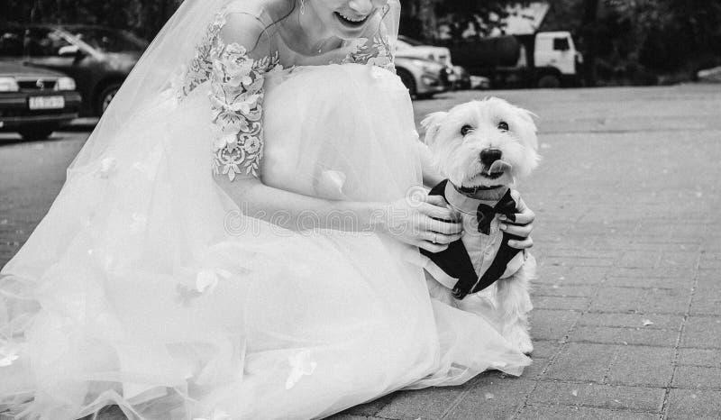 Brudklänning utanför att sitta den lilla vita hunden royaltyfri foto