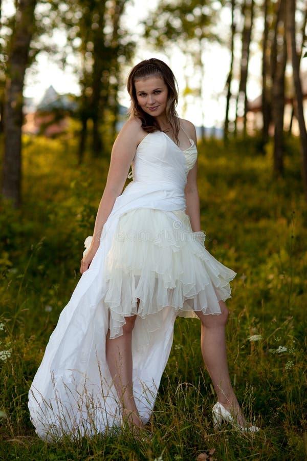 brudklänningwhite royaltyfri bild