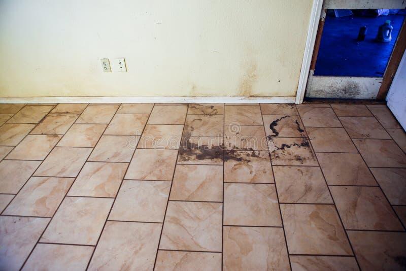 Brudna brudna dachówkowa podłoga i parawanowy drzwi obraz royalty free