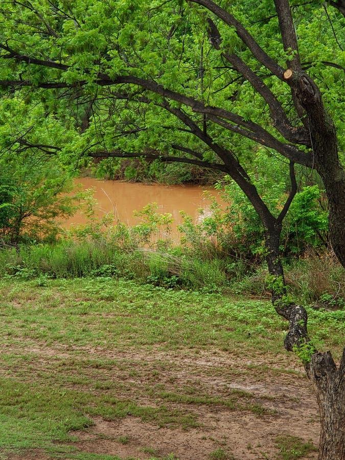 Brudna rzeka po Padać obrazy royalty free