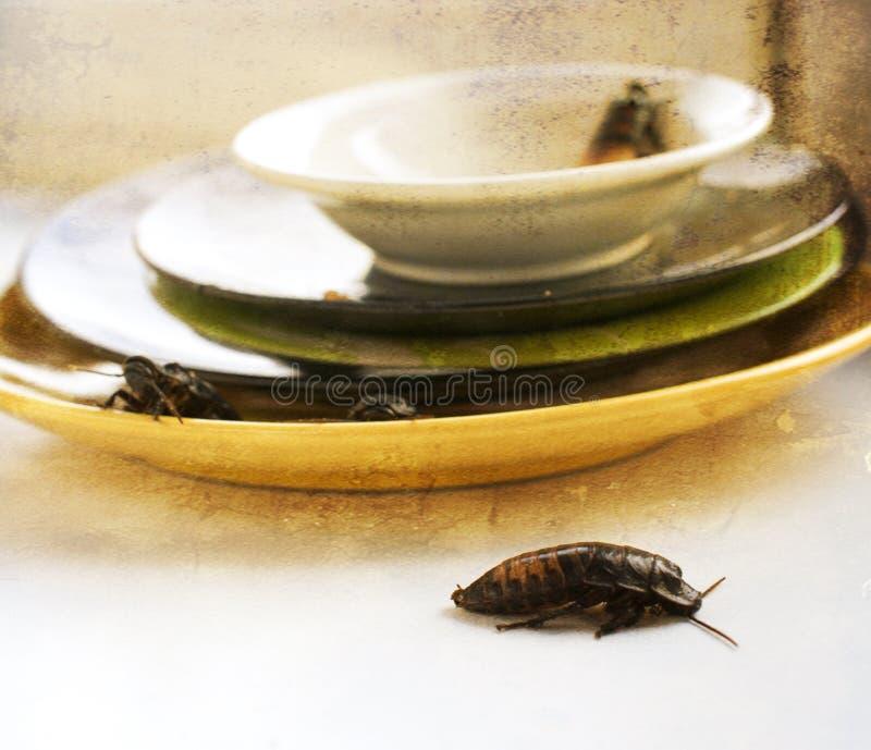 Brudny kuchnia stos brudni naczynia atakujący z obraz stock