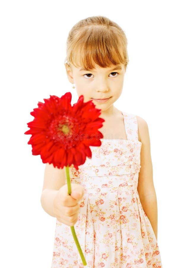 brudtärna little som är röd fotografering för bildbyråer