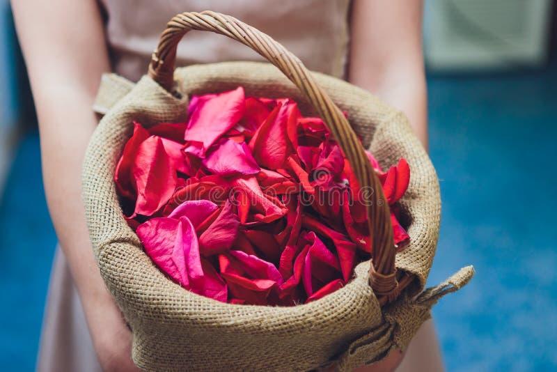 Brudtärnan i en vit klänning som rymmer blommakorgar för spridning, steg kronbladet på ett gifta sig mottagande som kyrktar för a fotografering för bildbyråer