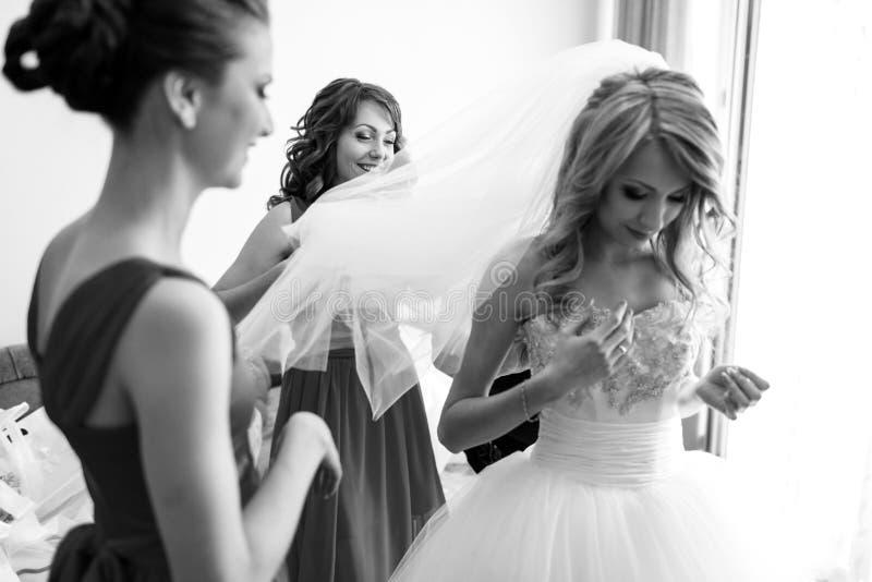 Brudtärnor rymmer en skyla, medan bruden justerar henne korsetterar arkivfoton