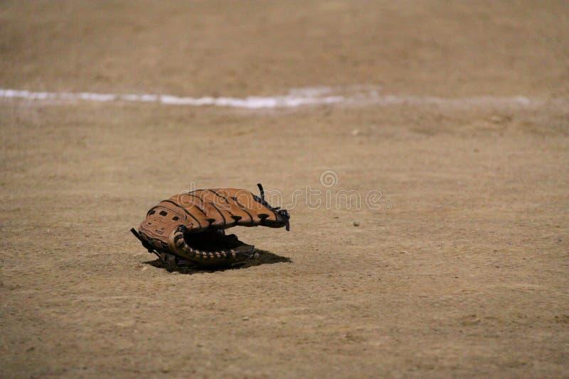 brudu rękawiczki softball obraz stock