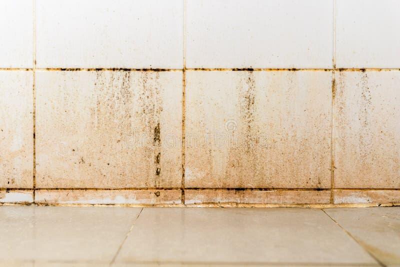 Brudzi na ceramicznej ścianie w łazience zdjęcie stock