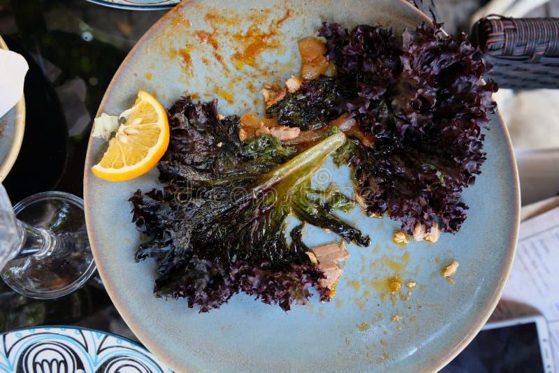 Brudzi talerza po gościa restauracji Resztki niedojedzona sałatka fotografia royalty free